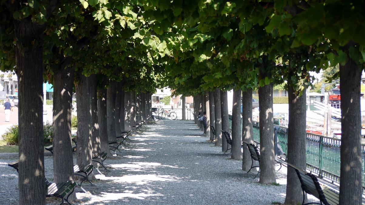 PANCHINE RIVA CERNOBBIO- Fasana 1904 Cernobbio